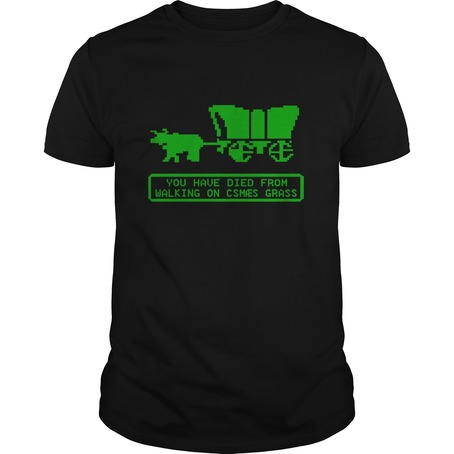 You Have Died From Walking On Csmaes Grass t shirt