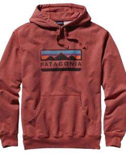 Patagonia hoodie